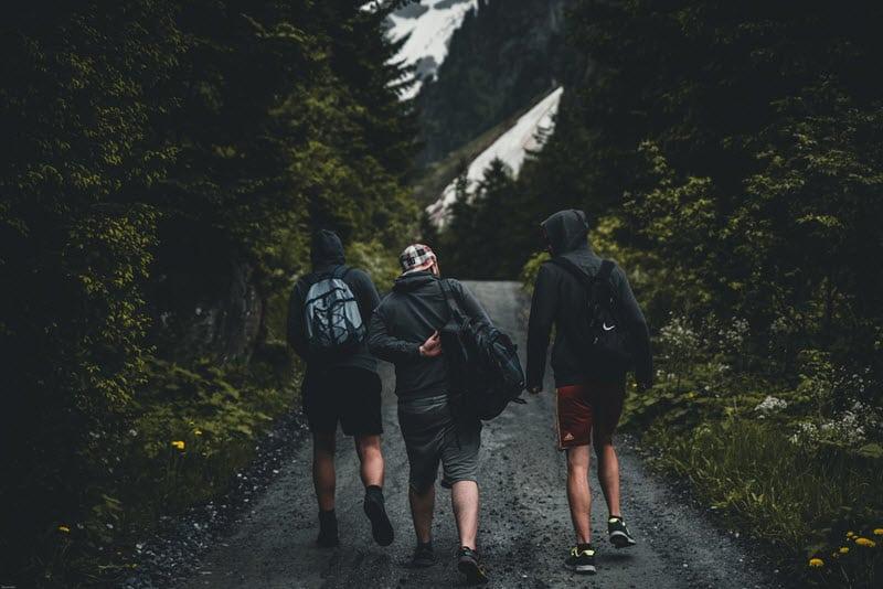 Men Walking Forest